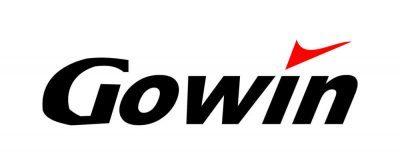 gowin i e1593243279369