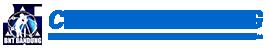 CV. BNT Logo